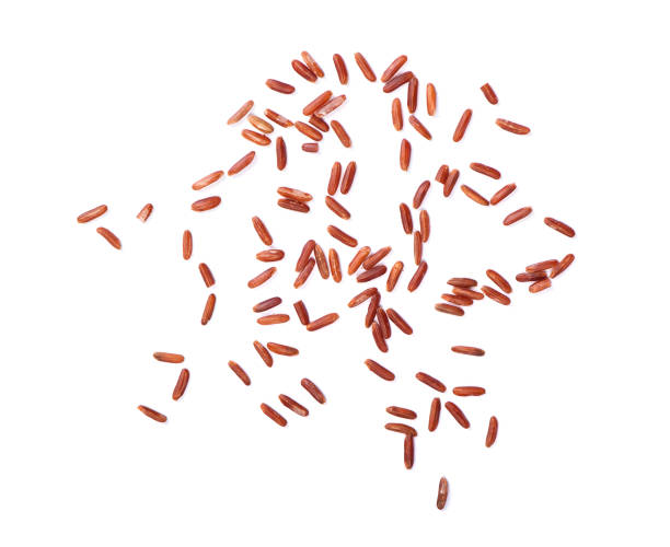 brown rice Scattered seeds of raw dry brown rice isolated on white background human parainfluenza virus stock pictures, royalty-free photos & images