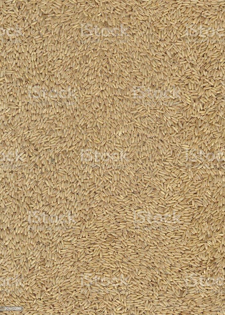 Brown rice (XXL) royalty-free stock photo