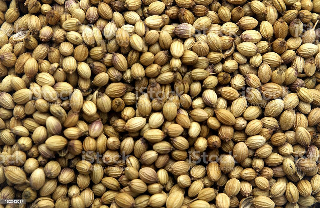 Brown Seeds royalty-free stock photo