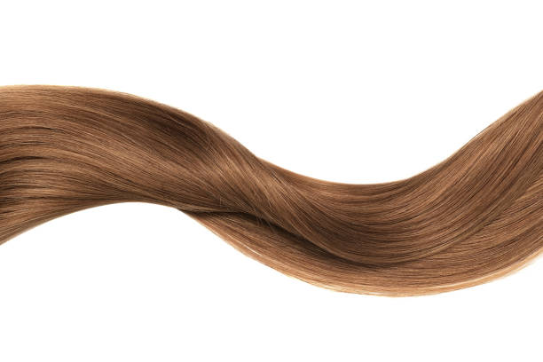 Brown shiny hair wave, isolated over white Natural hair isolated over white long hair stock pictures, royalty-free photos & images