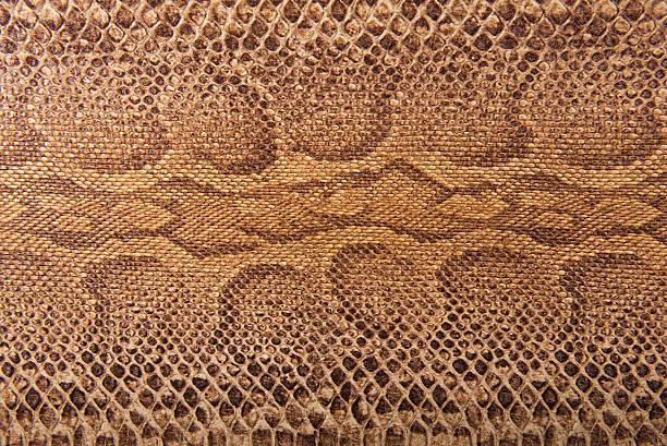 Serpiente marrón, patrón de fondo imitación - foto de stock