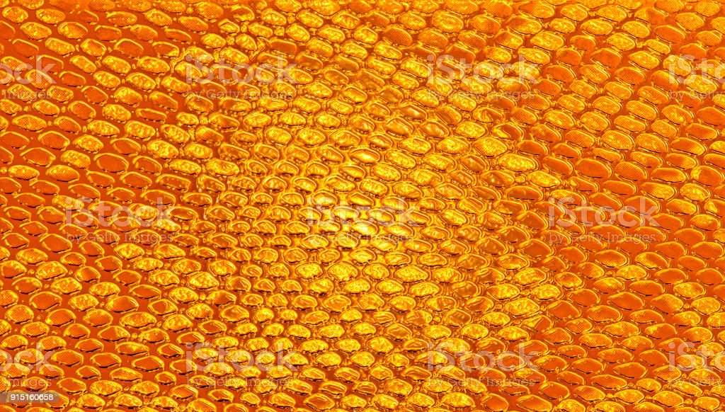 Brown snake skin, can use as background stock photo
