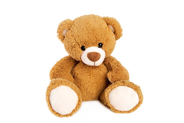 Royalty Free Teddy Bear Pictures, Images and Stock Photos ...