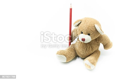 Brown teddy bear toy sitting holding red pencil on white background,for education background