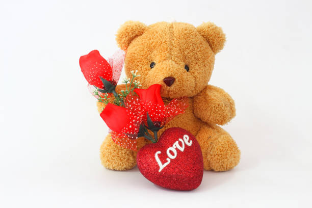 Top 60 Roses And A Teddy Bear Stock Photos, Pictures, and ...