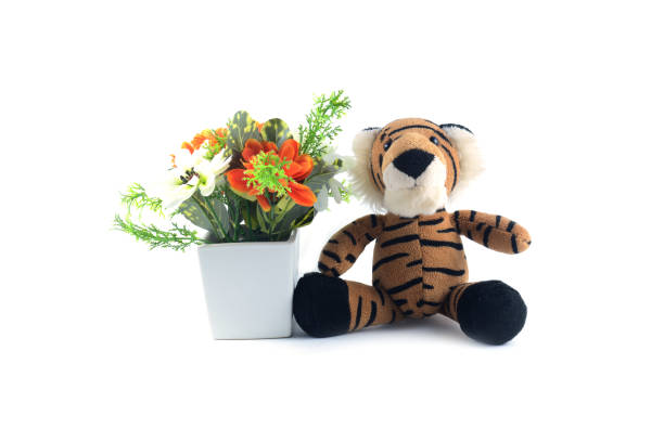 Brown tiger doll with white and orange flower in white pot picture id823440938?b=1&k=6&m=823440938&s=612x612&w=0&h=ibf7yq2cqscvldfkvlfqtg w6nmbntxjslfjj5gyr 0=
