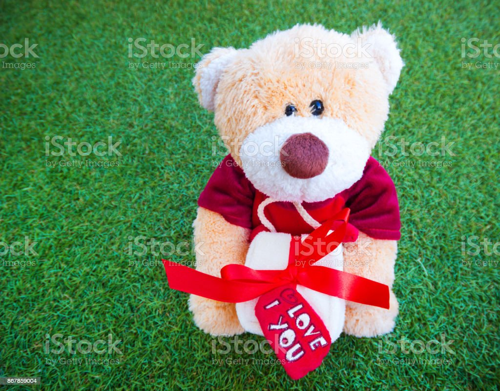 Brown toy teddy bear holding a gift box on the green grass background. stock photo