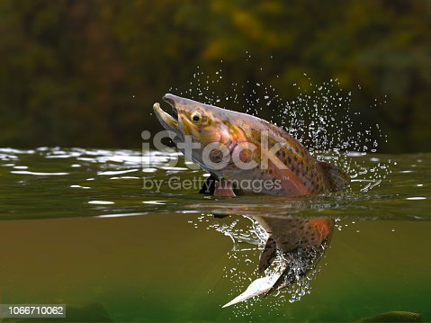 Brown trout fish jumping in river halfwater view 3d realitstic render