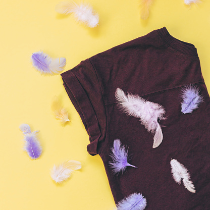 640200626 istock photo brown t-shirt and  feathers 914751250