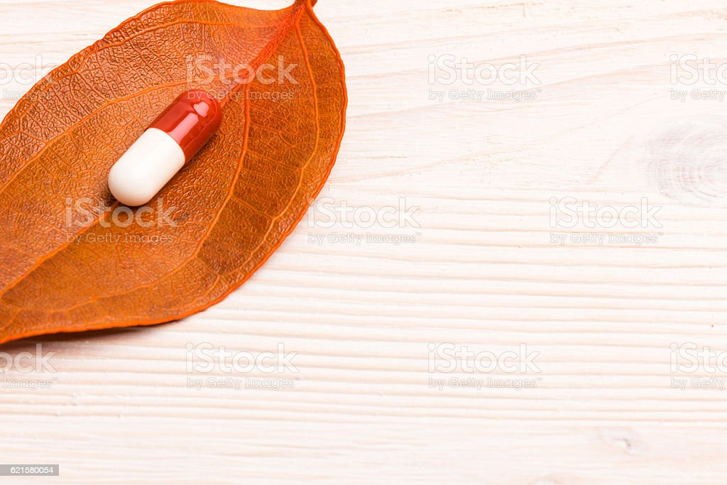Brown white medical pill on single orange leaf stock photo
