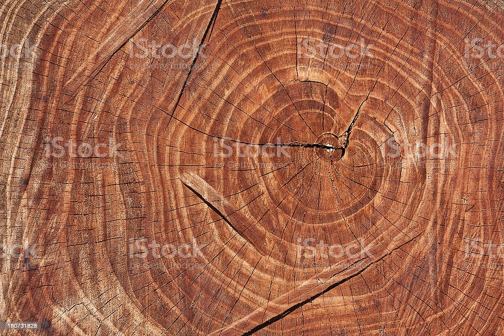 brown wooden pattern, creative abstract design background photo royalty-free stock photo