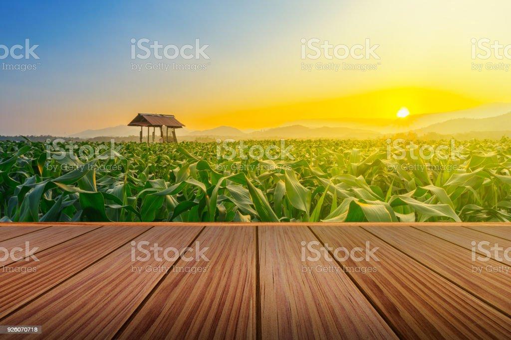 Terraza De Madera Marrón En Choza De Maizal Y Granjero En
