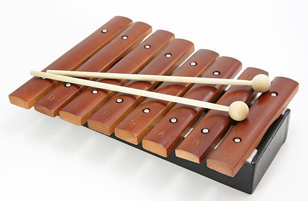 Royalty Free Xylophone Pictures, Images and Stock Photos ...
