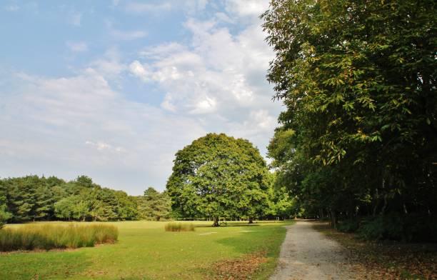Brownsea stock photo
