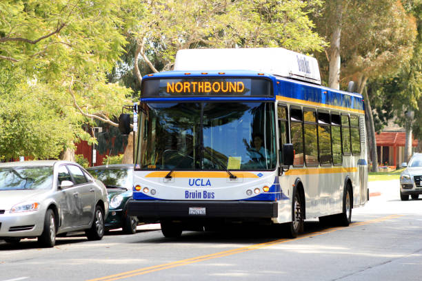 Bruin Bus, the School Bus of UCLA - University of California, Los Angeles Los Angeles, United States - July 03, 2012: Bruin Bus, the School Bus of UCLA - University of California, Los Angeles. royce lake stock pictures, royalty-free photos & images