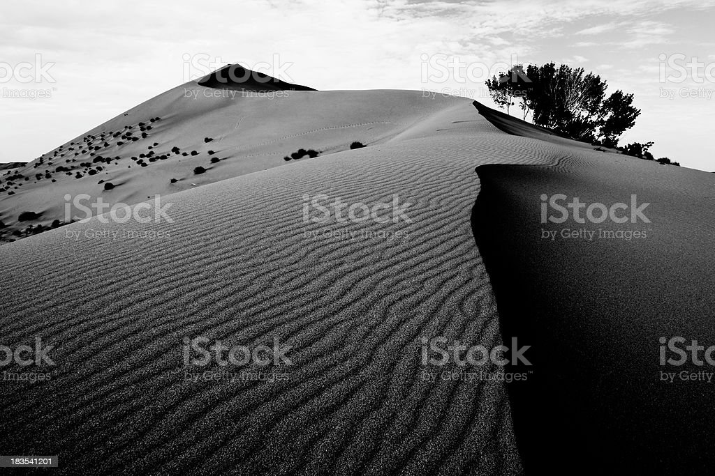Bruneau Dunes State Park royalty-free stock photo
