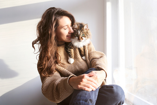 1149249445 istock photo Brunette female in knitted sweater with her fluffy cat. 1261387680