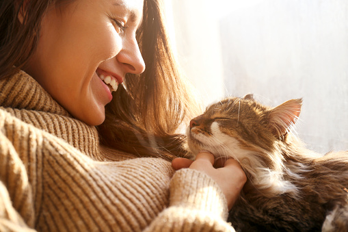 1149249445 istock photo Brunette female in knitted sweater with her fluffy cat. 1261388739