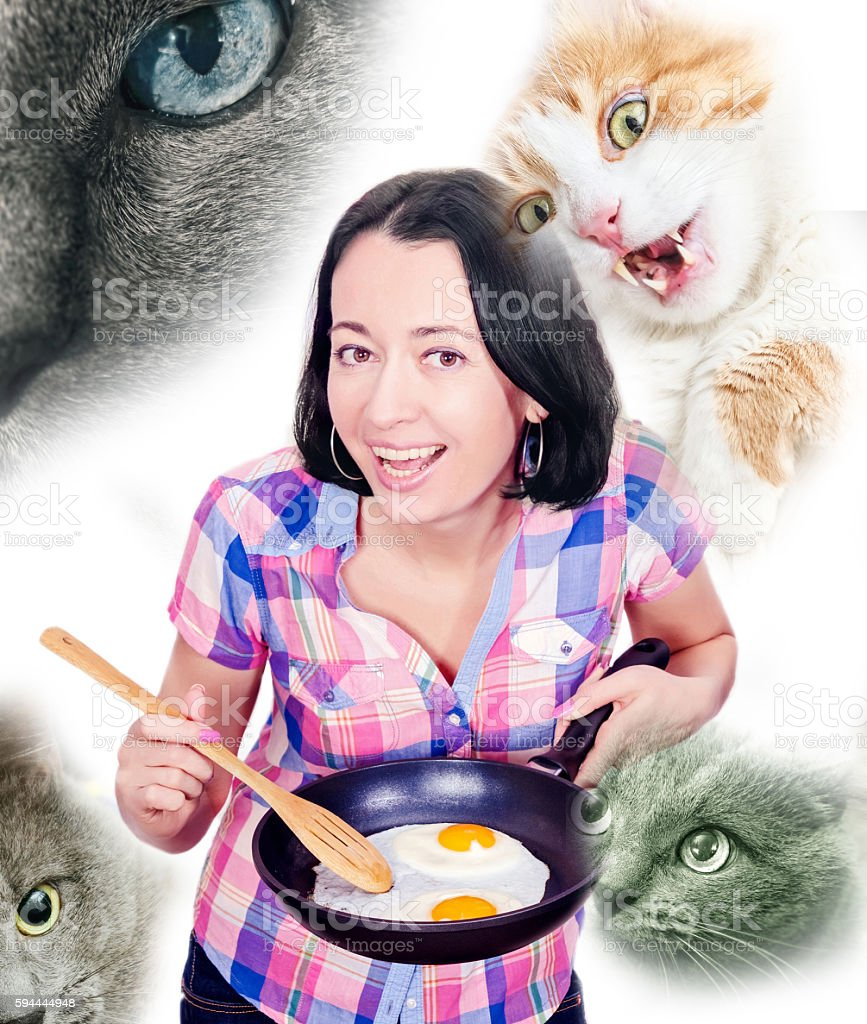 Brunette with scrambled eggs and cats stock photo