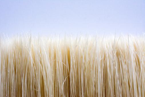 Hairs of an Artist brush close up looks like a summer crop