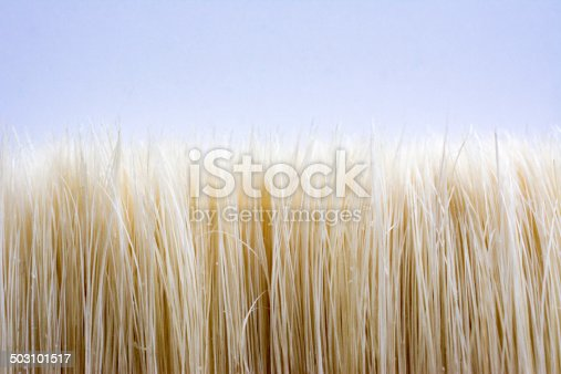 Hairs of an Artist brush close up looks like a summer crop