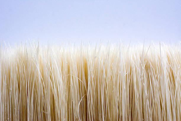 brush crop - stekels stockfoto's en -beelden