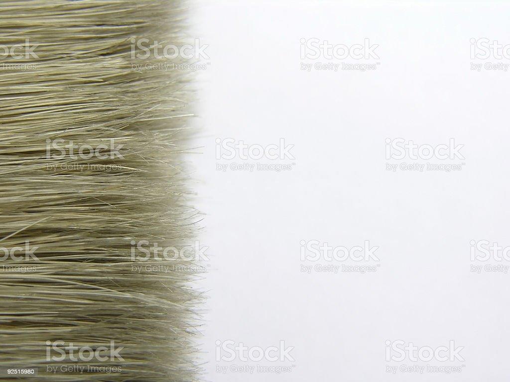 Brush Isolated On White royalty-free stock photo