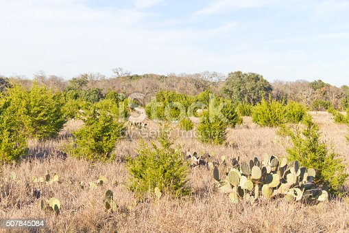 istock Brushy Creek Regional Trail 507845084