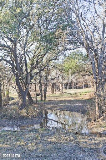 istock Brushy Creek Regional Trail 507845178