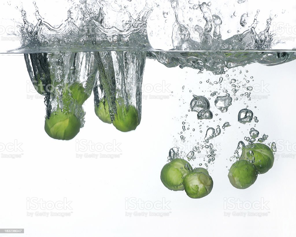 Brussel Sprout in the water royalty-free stock photo