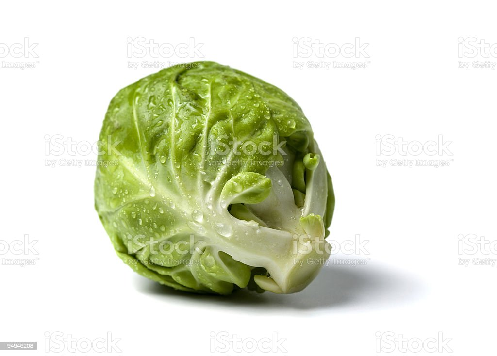 brussel sprout with water droplets royalty-free stock photo