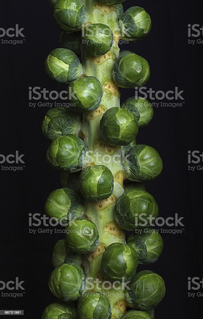 Brussell Sprouts royalty free stockfoto