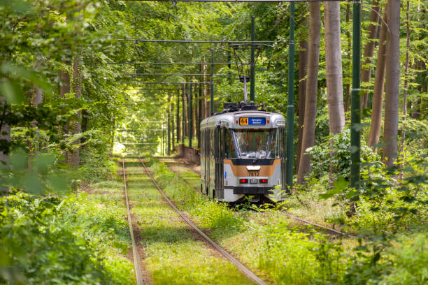 Brussels contemporary tramways in the spring stock photo