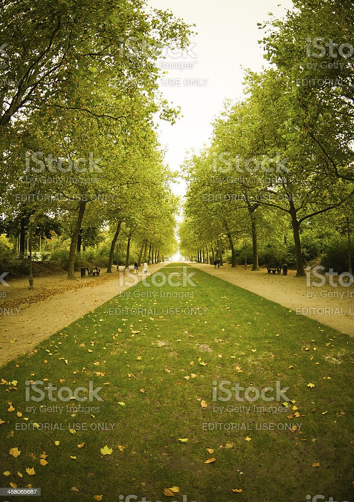 Brussels Park in autumn royalty-free stock photo