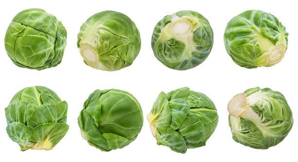 布魯塞爾發芽被隔絕在白色背景與剪裁路徑 - 小椰菜 個照片及圖片檔