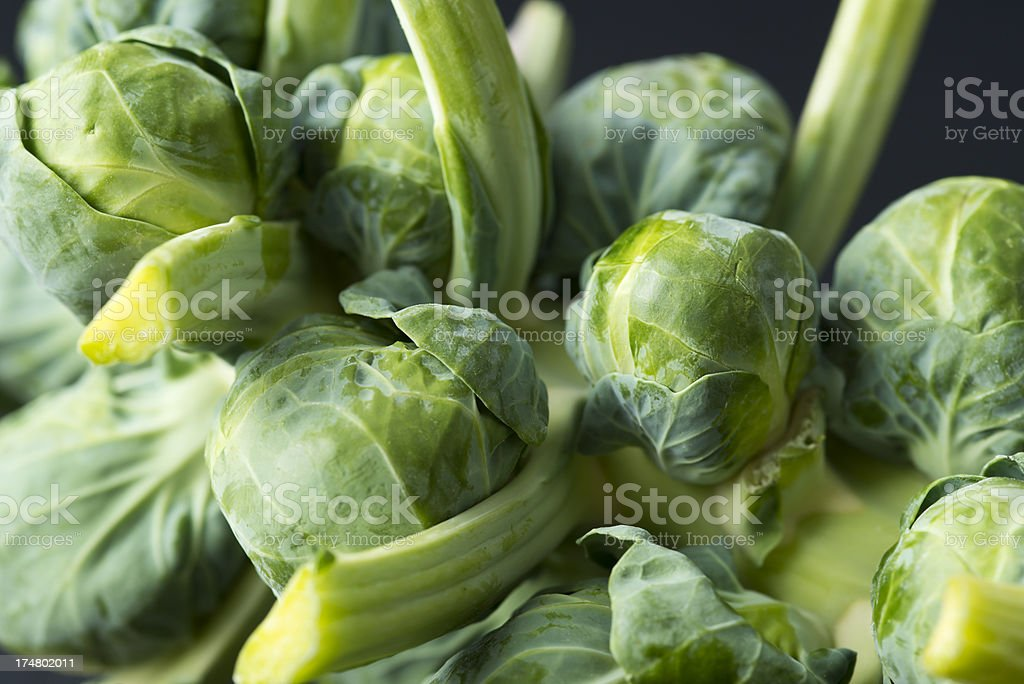 Brussels Sprout royalty-free stock photo