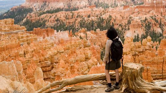 Bryce Canyon Hiker Stockfoto en meer beelden van Aardpiramide
