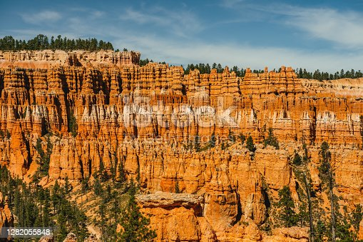 Bryce Canyon National Park amphitheater. Sandstone spires and pine tree forest with beautiful blue sky on background