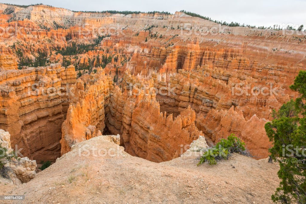 Bryce Canyon National Park in Utah stock photo