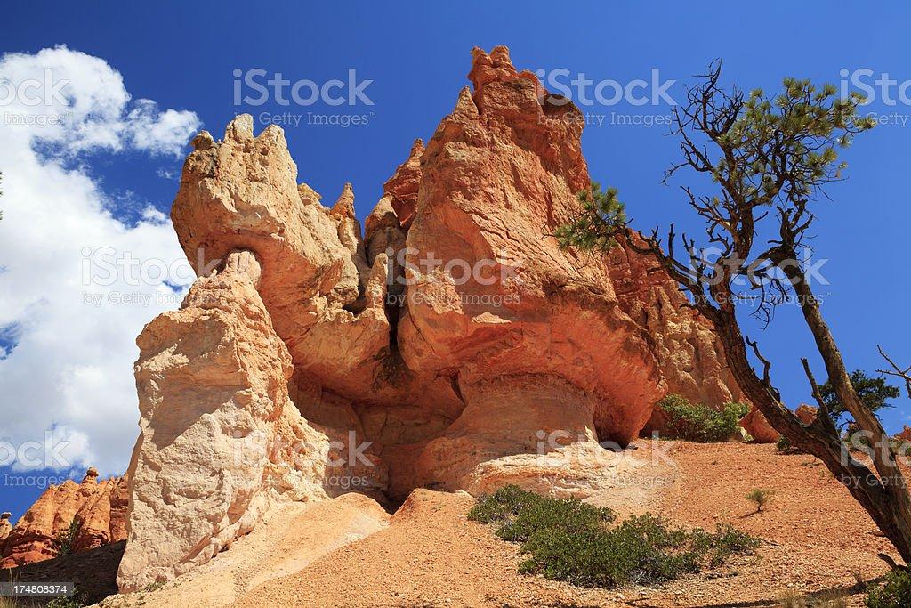 Bryce canyon national park, Utah. USA. royalty-free stock photo