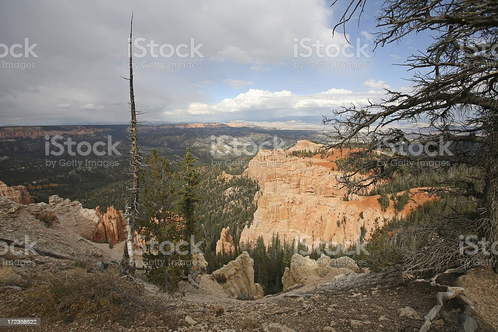 Bryce Canyon Rainbow Point royalty-free stock photo