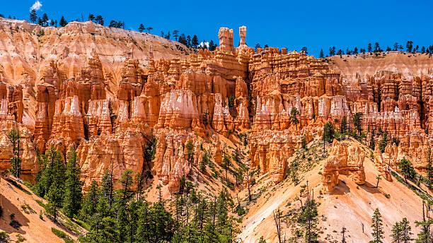 Bryce Canyon Rim – Foto