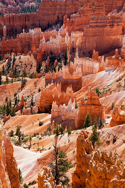 Bryce Canyon Rock Formations stock photo