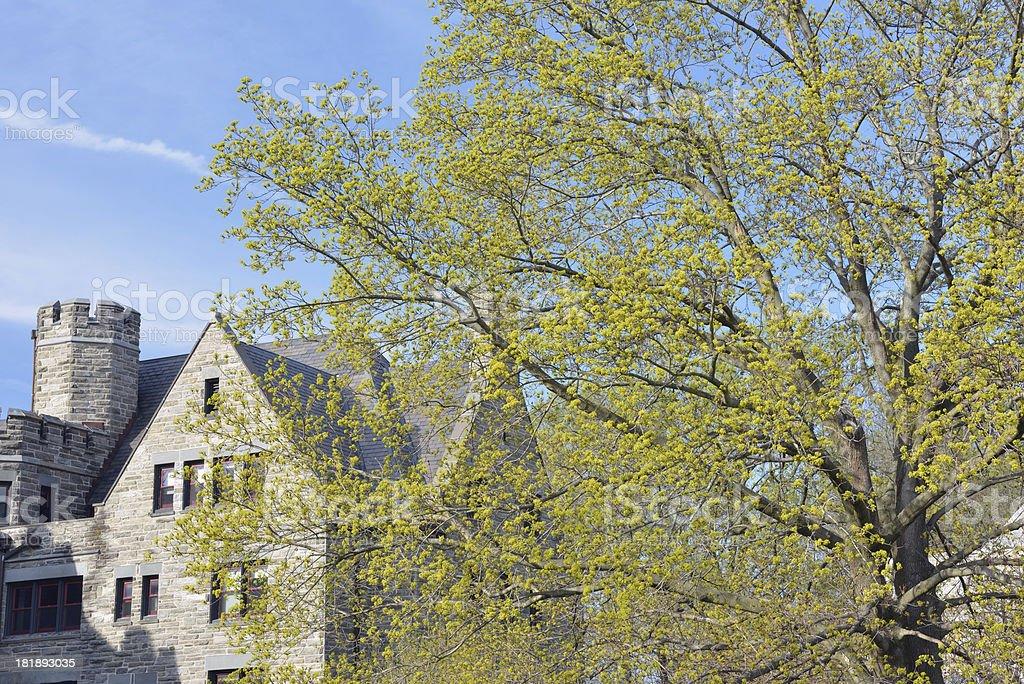 Bryn Mawr College royalty-free stock photo