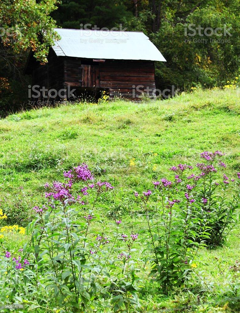 Bryson City Cabin stock photo