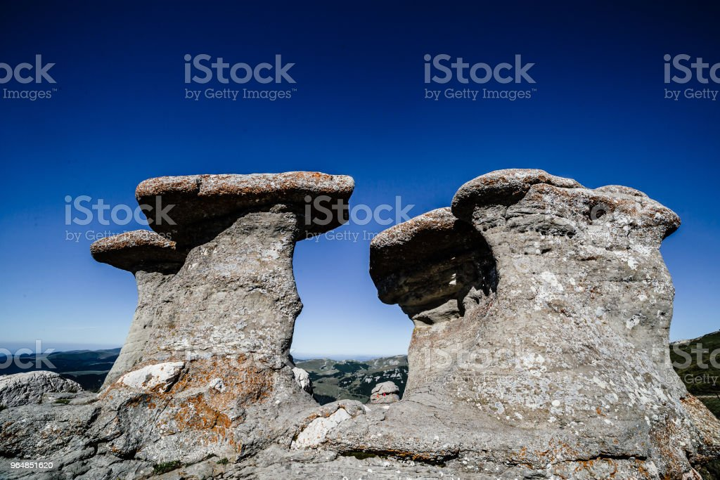 Bucegi natural park royalty-free stock photo