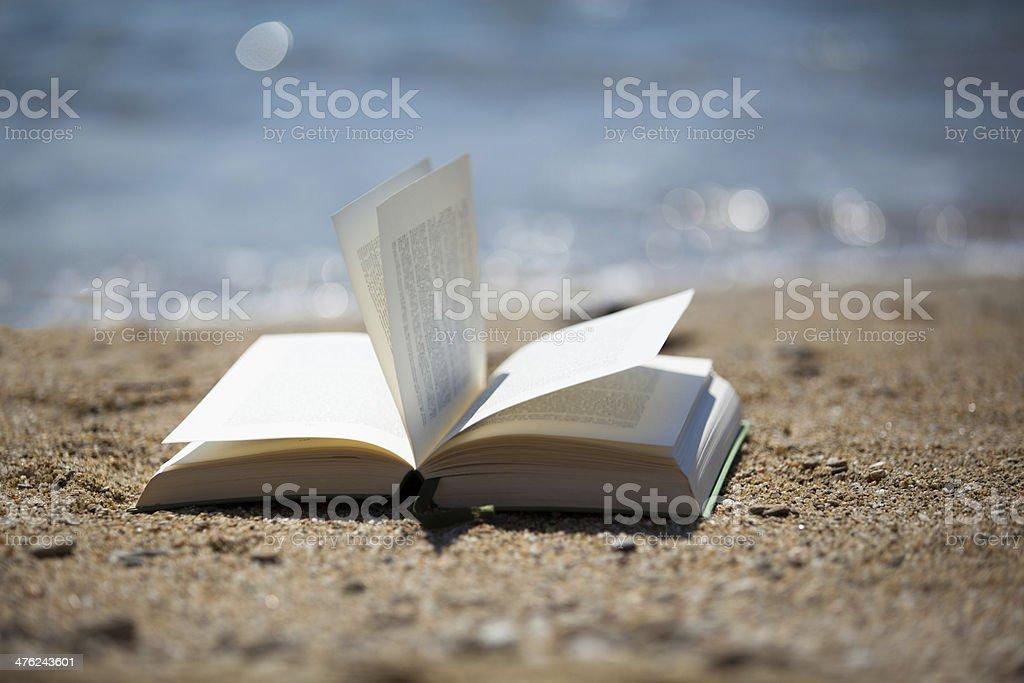 Buch im Wind am Strand - Royalty-free Atlantic Ocean Stock Photo