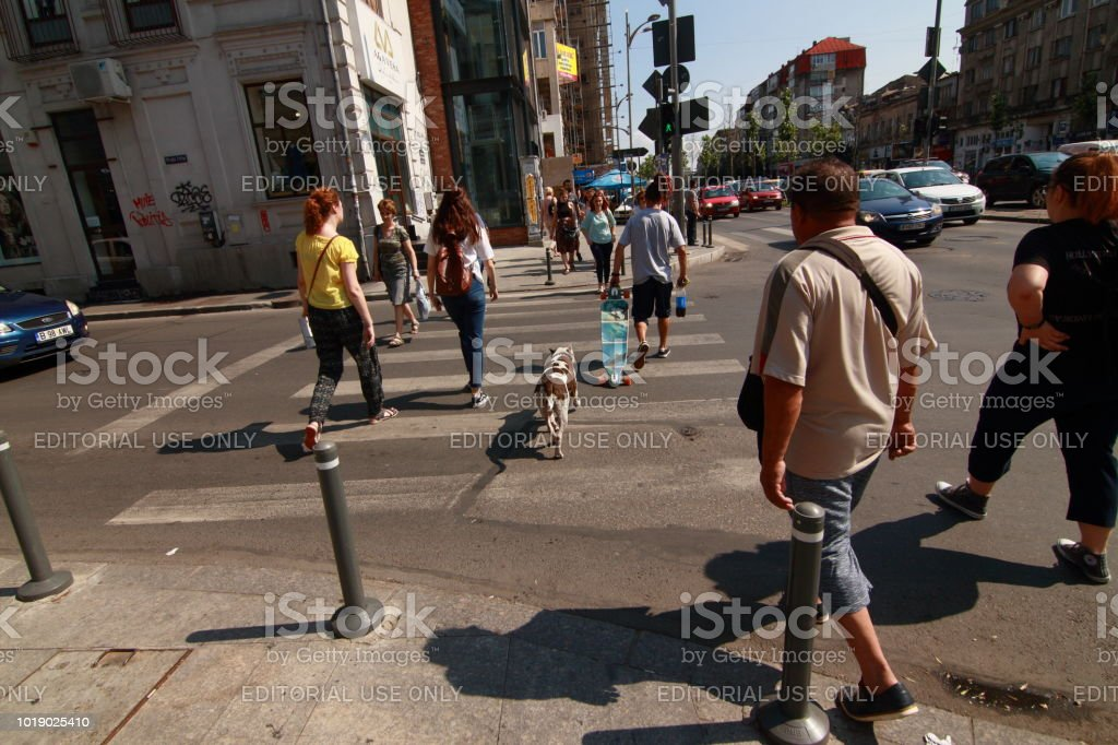 Bucharest street photography - downtown stock photo