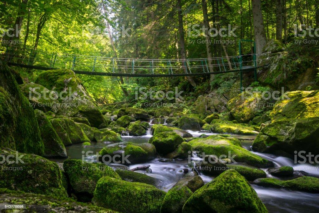 Buchberger Leite Wildbachklamm Naturfluss – Foto