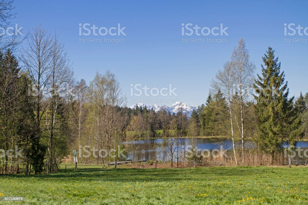Buchner pond in the idyllic landscape near Bad Toelz stock photo